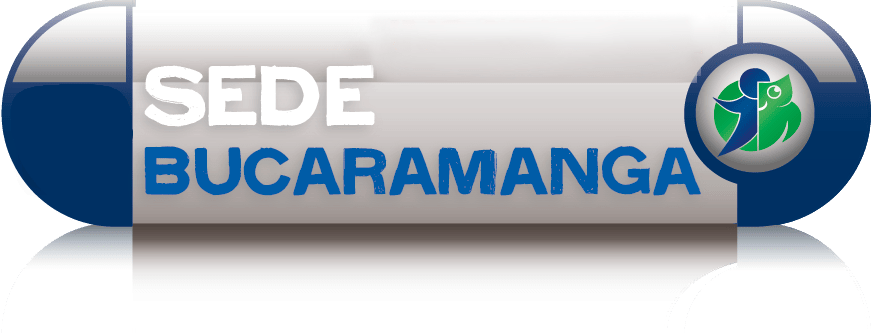 q10-bucaramanga