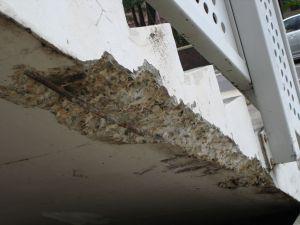 Concrete Cancer Repair