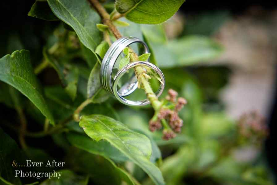 wedding day, wedding rings, and ever after photography