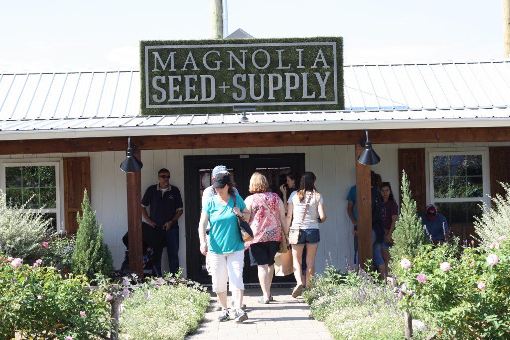 Magnolia-Seed-Supply