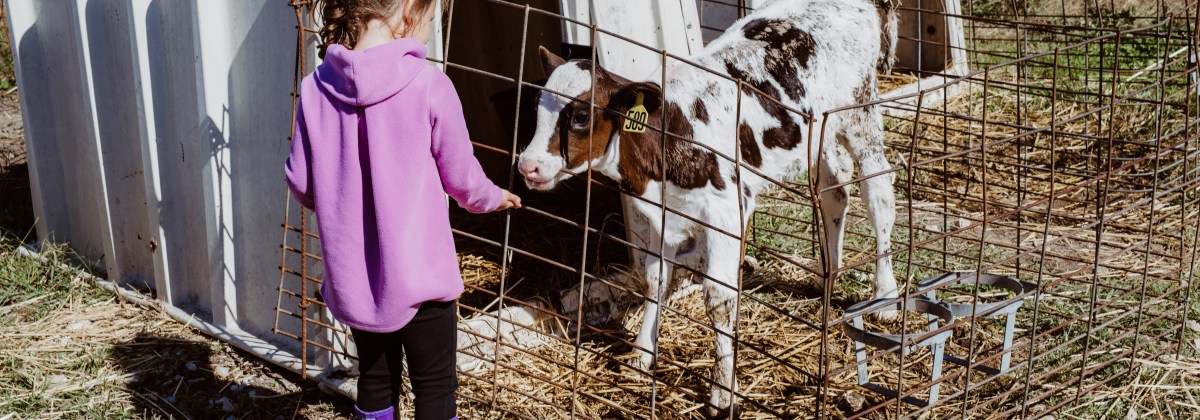 A Dairy Farm Tour with Prairie Farms