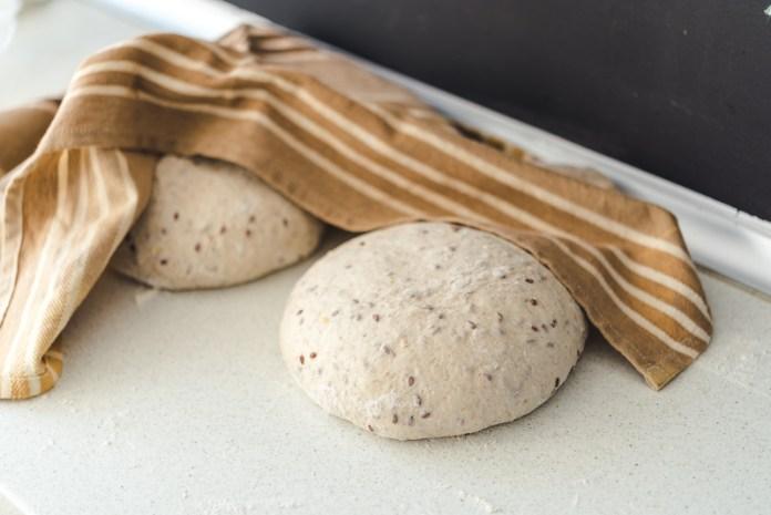 paine-cu-maia-pas-cu-pas-15