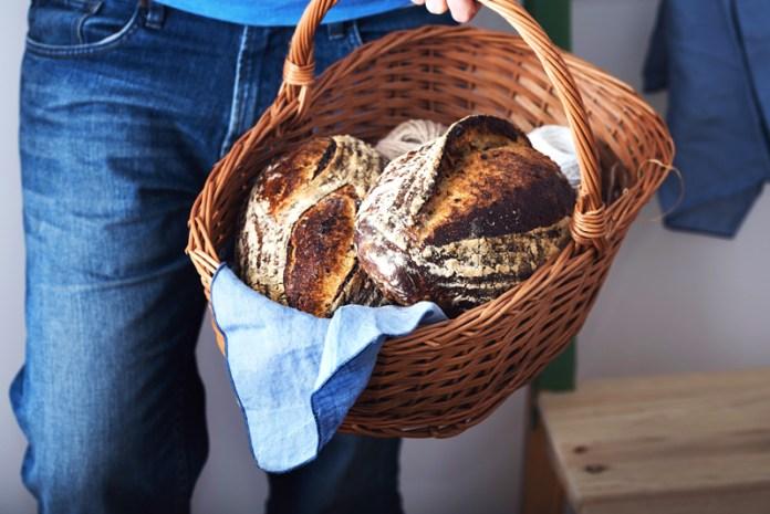 paine-cu-maia-web2