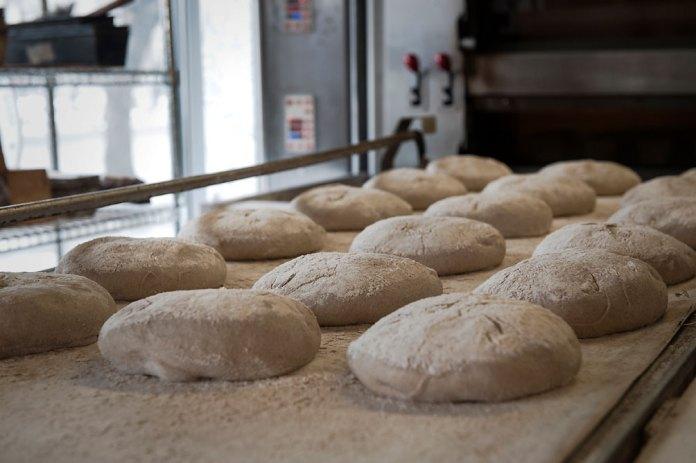 brutar paine cu maia