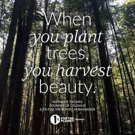 caudalie brand beauty che proteggono il pianeta