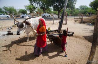 wpid374-Indien-074.jpg