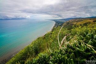 wpid1369-Neuseeland-031.jpg
