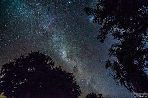 wpid1387-Neuseeland-040.jpg