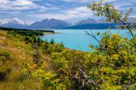 wpid1503-Neuseeland-098.jpg