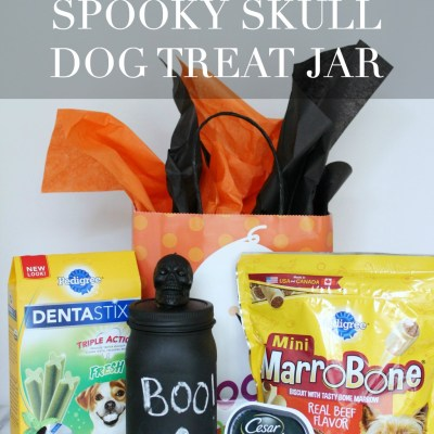 DIY Chalkboard Skull Dog Treat Jar
