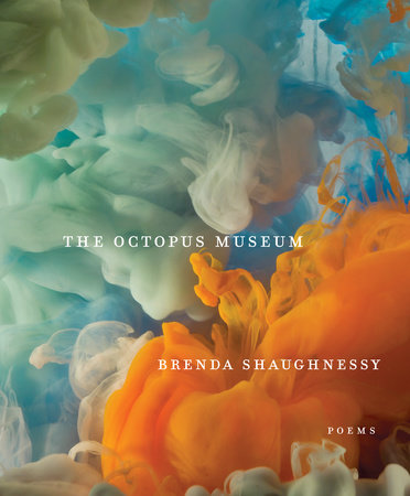 The Octopus Museum by Brenda Shaughnessy