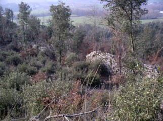 Castel-Peccio-13