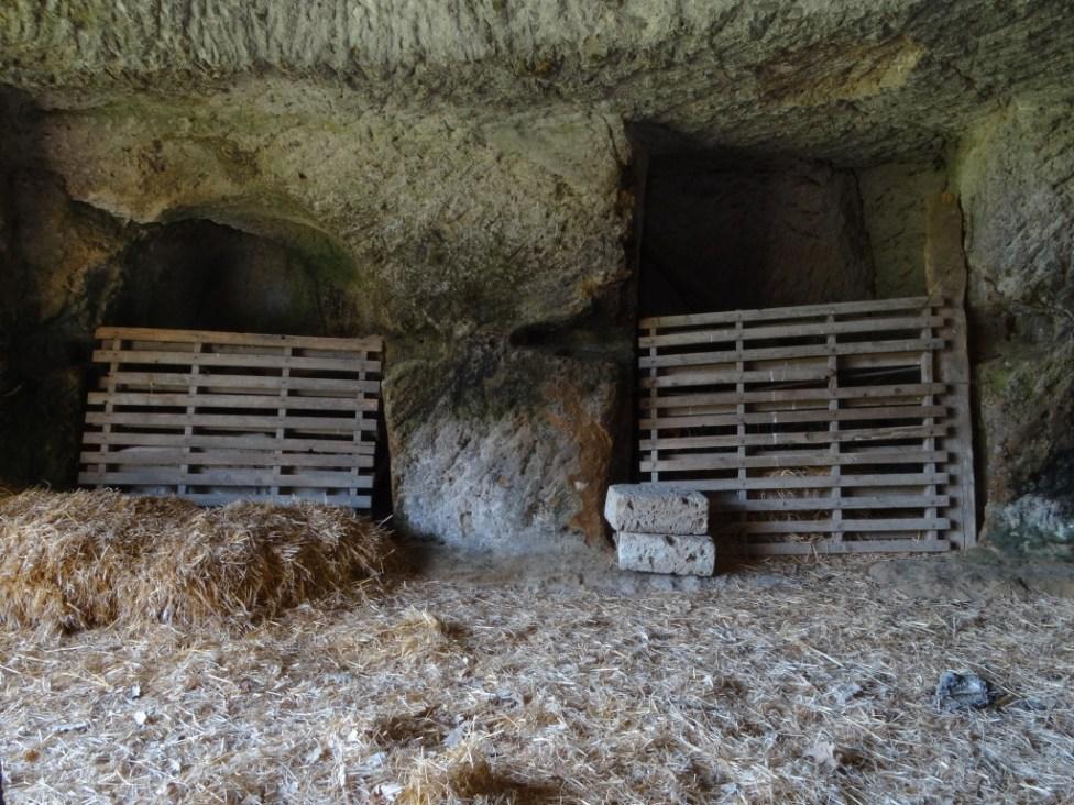 grotta-nicchie-SLV-09