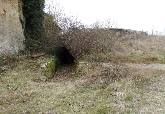 monumento-rupestre-30