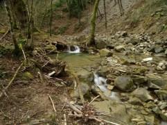torrente-dei-mulini-29