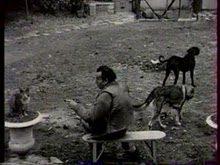Celine depennato in Francia dalle commemorazioni