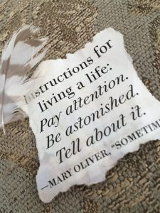 "picture of Mary Oliver quote ""instruction for living a life:"