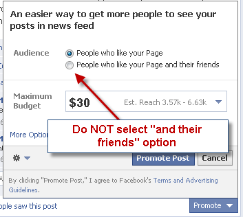 Promoted posts and their friends option