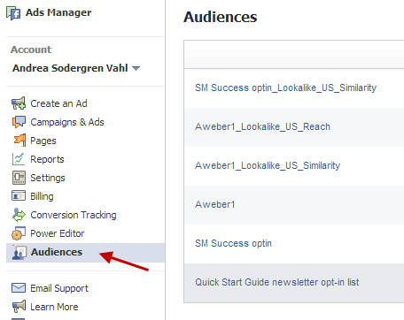 custom audiences ads manager