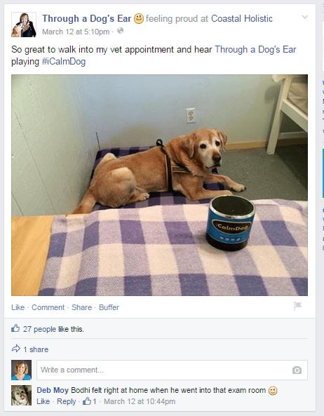 Through a Dogs Ears