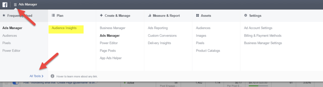 Audience Insights Facebook