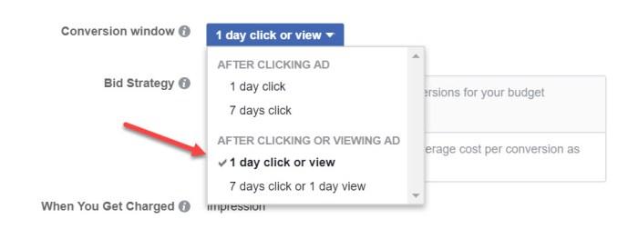Conversion Window Facebook Ads