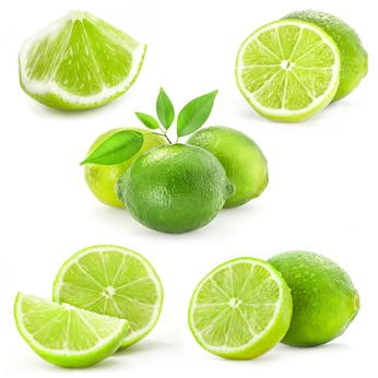 Collection Fresh lime and slice, Isolated on white background