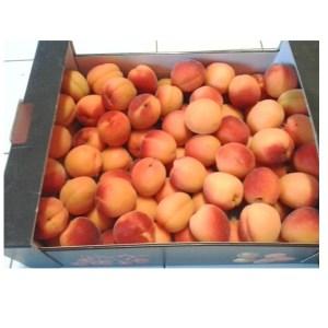 abricot-colis