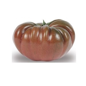 tomate-noire