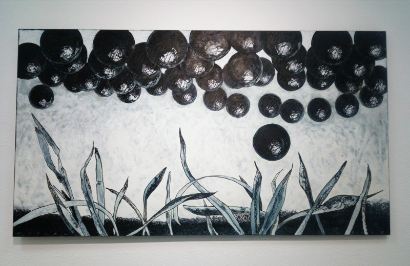 Art Safari 2016 - Andreea Tudor