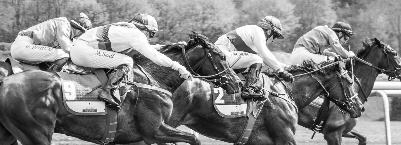 Pferderennen Hannover Neue Bult