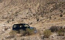 Suzuki Jimmy у подножия крутого склона, усыпанного кактусами.