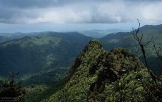 Тропа El Yunque Peak trail. К полудню облака начинают наступление на вершины.