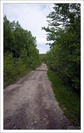 Дорога к лодочной станции.