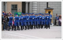 Королевская гвардия Hogvakten.