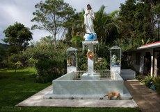 Небольшая частная плантация и скульптуры святых.