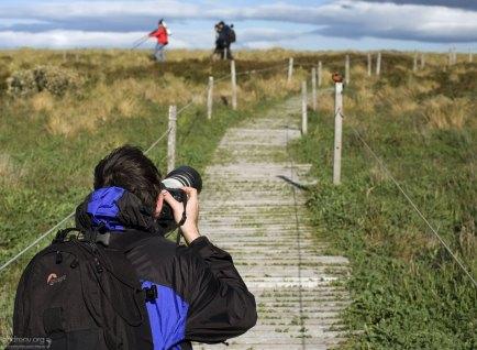 Илья фотоохотится на птиц.