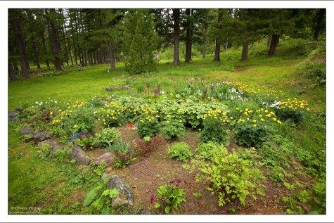 Многочисленные клумбы с цветами создают иллюзию присутствия на юге. Ботанический сад.