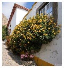 В этом доме живет явный любитель желтого цвета.