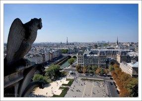 Париж с высоты колокольни Нотр-Дама.