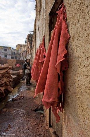 Покрашенные шкурные заготовки сушатся на стене. Кожевенный кооператив в медине.