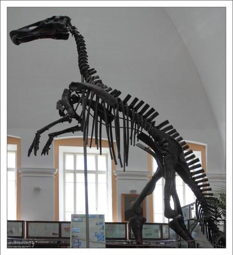 Первый смонтированный в России скелет динозавра Mandschurosaurus amurensi. НИИ им. А. П. Карпинского.