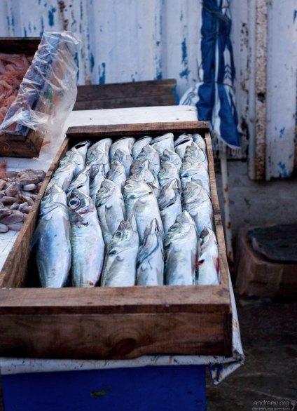 Марокко - крупнейший экспортер сардин в мире.