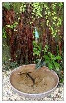 Дерево Los Barbados tree, в честь которого назван весь остров. Заповедник Flower Forest.
