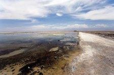 Лагуна Chaxa на соляной равнине Salar de Atacama.