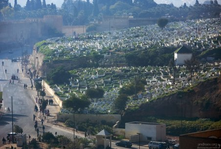 Мусульманское кладбище на северном холме. Фес.