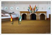 Арена Picadero на которой происходит выступление лошадей во время шоу. Real Escuela Andaluza del Arte Ecuestre.