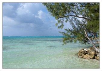 Спокойные воды Карибского моря.