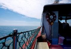 На катере помещается всего 8 человек, плюс члены экипажа.