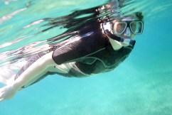 Первый заплыв на Барьерном рифе. Coral Gardens.